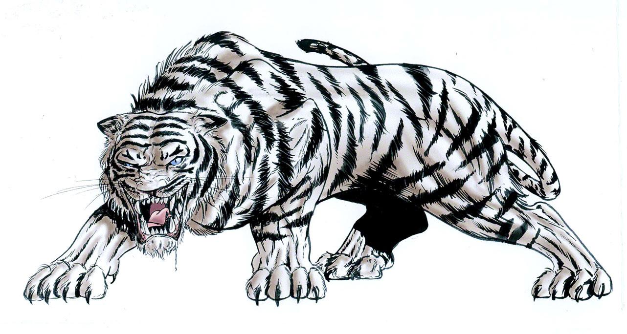 Dessin infographiste d veloppeur multim dia page 1 2 - Image dessin tigre ...