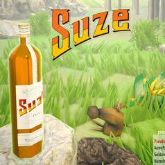 Simulateur Suze